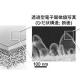RO膜の分離機能層の微細構造